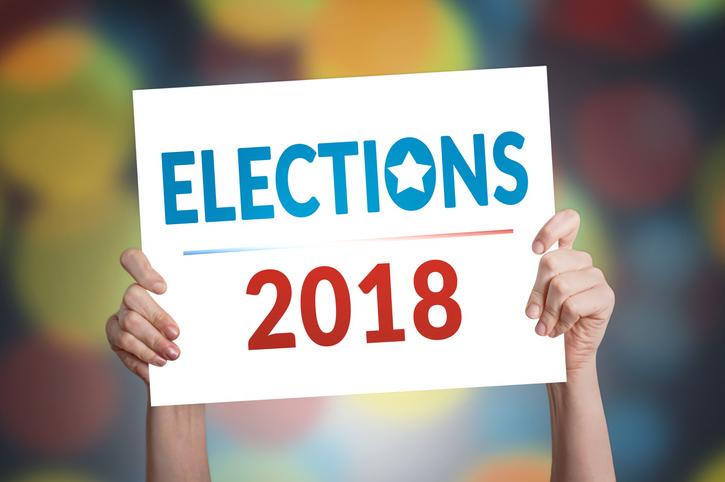 Michigan's 2018 General Election