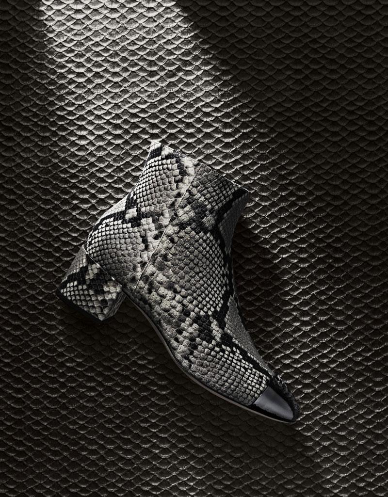 Spotlight On Snakeskin
